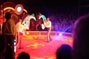 Bibi and Bichu, Giffords Circus